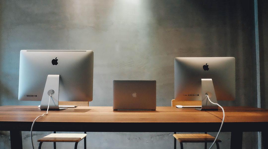 Web developer or website designer, what do I need?